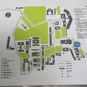 大学の思い出・・敷地は・・東京ドーム8個分弱・・・