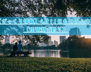 【ざっくり情報】4月11日もののふの日【琵琶湖で釣り】