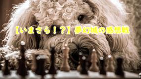 【いまさら!?】夢幻城の感想戦