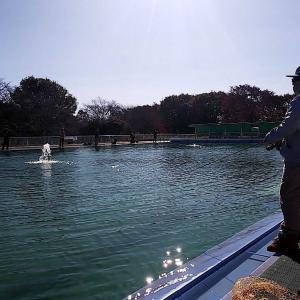 栃木市総合運動公園 プール釣り開幕