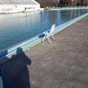 栃木市総合運動公園 プール釣りでスキルアップに五目釣り
