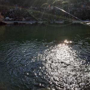 発光路の森フィッシングエリア テンカラで1匹を釣る