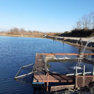 なら山沼漁場 一匹の為の釣行