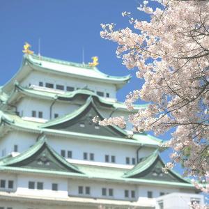 親子で桜を楽しもう!名古屋市内のおすすめお花見スポット