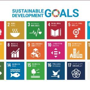 SDGs の真相