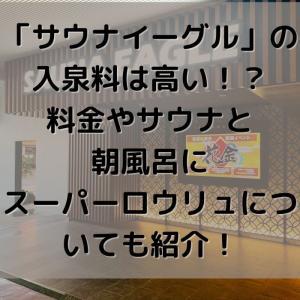 名古屋「サウナイーグル」の入泉料は高い!?料金やサウナと朝風呂にスーパーロウリュについても紹介!