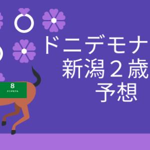 新潟2歳S予想2020(最終予想更新済)