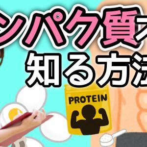 検査データを用いてタンパク質不足を知る方法 アスリート食事 筋トレ