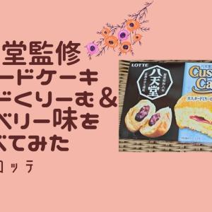 春季限定、八天堂監修のカスタードケーキ(カスタードくりーむ&ブルーベリー味)を食べてみた【ロッテ×八天堂】
