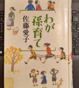 『わが孫育て』-佐藤愛子-