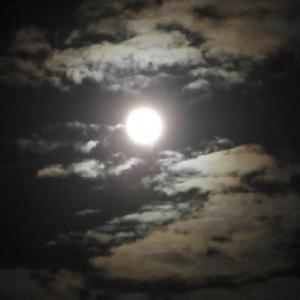 お下がりのカメラで中秋の名月