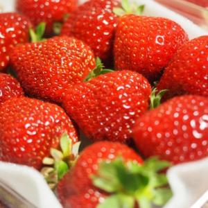 美肌にもなれちゃう♪イチゴを食べて免疫力アップ!