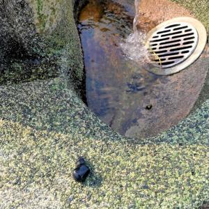 防水ワイヤレスイヤホンを水たまりに落とした