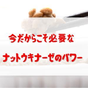 納豆博士はナットウキナーゼで血栓を溶かすサプリとしてだけ?