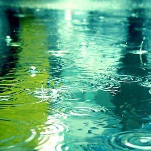 雨と体と心の不調