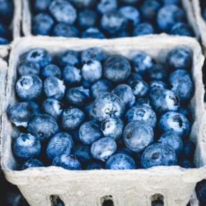 青色のフルーツに含まれる「アントシアニン」が脳機能をブーストし、運動のパフォーマンスを上げるかも?