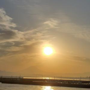 徒然備忘録「黄金の日日」を思うその2・2021年のハリーナカヨ