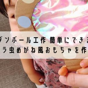 ダンボール工作 簡単にできるキラキラ虫めがね風おもちゃを作ろう!