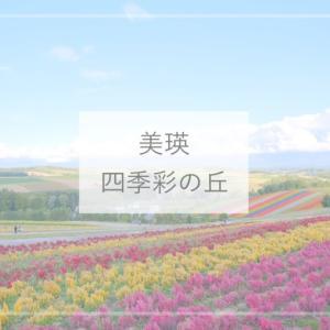 【美瑛観光】パッチワークの花畑が美しい!「四季彩の丘」かわいいアルパカもいるよ♪