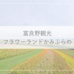 【富良野観光】パッチワークの花畑がかわいい!フラワーランドかみふらの