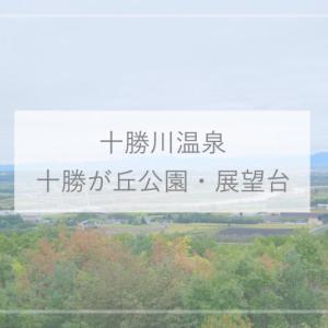 【十勝川温泉観光】絶景!十勝ヶ丘公園・花時計ハナック・十勝が丘展望台