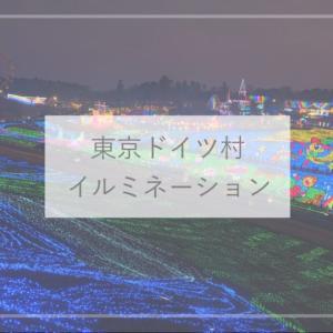 【千葉観光】音楽に合わせて光るイルミネーションがすごい!東京ドイツ村のイルミネーション