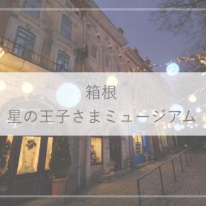 【箱根観光】フランスみたい!星の王子さまミュージアムのイルミネーション