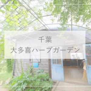 【千葉観光】無料で入れる!『大多喜ハーブガーデン』