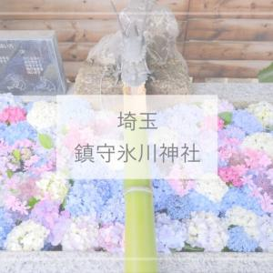 【埼玉観光】アジサイの花手水がかわいい!『鎮守氷川神社』(手水舎・富士塚・クシナダヒメの御朱印)