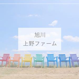 【北海道観光】SNS映えするスポットいっぱい!旭川のかわいいガーデン『上野ファーム』