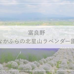 【富良野観光】なかふらの北星山ラベンダー園