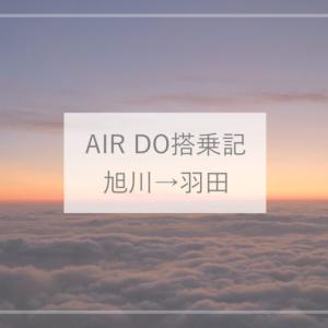 【AIR DO搭乗機】旭川空港から羽田までの飛行機の旅