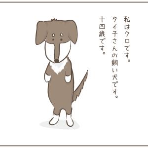 一服の広場:犬のクロの苦労