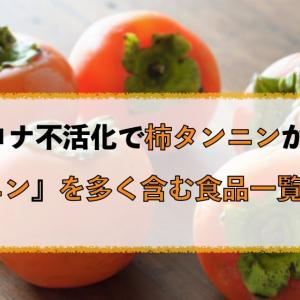 柿の成分で新型コロナが不活化、奈良医大発表でカキタンニンが注目!