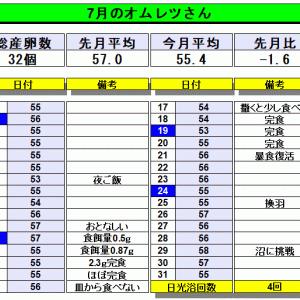 こちヒメ2020 【7月まとめ】