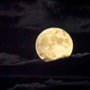 魚座の満月は、一番好きだな。