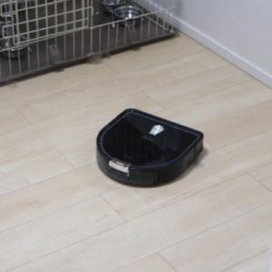 床の抜け毛は、ロボット掃除機が捗るけど注意が必要!