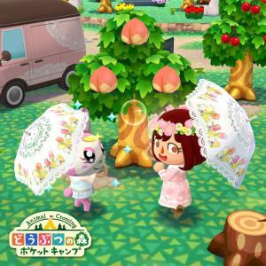 【どうぶつの森】ポケットキャンプを平和にのんびり楽しむスレ