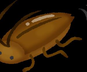 【季節】ゴキブリの季節が来たな・・ カサカサ…