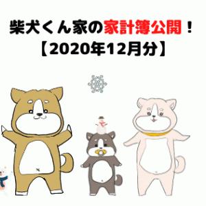 柴犬くん家の家計簿公開!【2020年12月分】