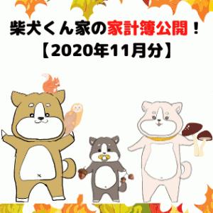 柴犬くん家の家計簿公開!【2020年11月分】