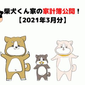 柴犬くん家の家計簿公開!【2021年3月分】