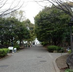 #48_本牧山頂公園