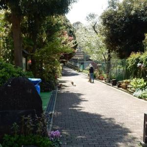 #49_弘明寺公園