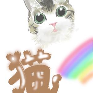 猫ぉおおおお