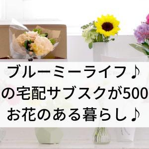 ブルーミーライフ♪お花の宅配サブスクが500円!お花のある暮らし♪