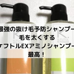 『最強の抜け毛予防シャンプー』毛を太くするケフトルEXアミノシャンプー最高!