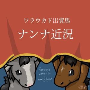 順調に良化!ワラウカド出資3歳馬ナンナ近況(2020/05/29)