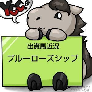 ついに入厩!YGG出資2歳馬ブルーローズシップ近況(2020/10/28)