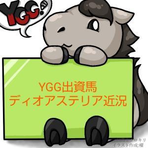 デビュー戦終了!YGG出資2歳馬ディオアステリア近況(2021/06/06)